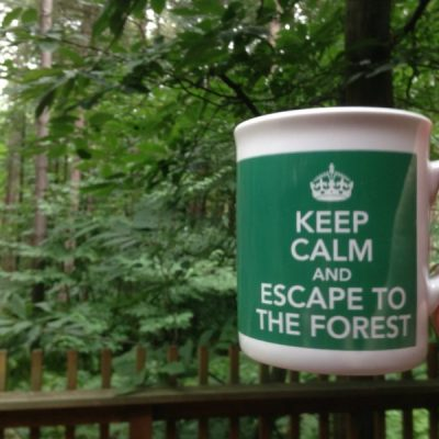 Finding relaxation at Forest Holidays