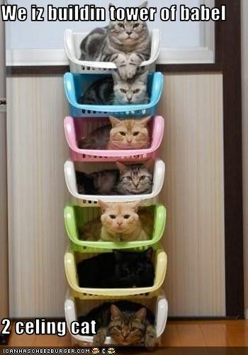 Ceiling Cat Tower