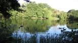 86-Kenwood-Ladies--Bathing-Pond