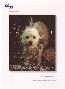 Borealis Press card