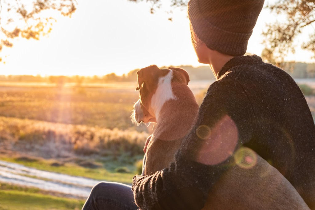 White man with a hat hugging a dog while watching a sunset. He found healing after attending counseling services at Willow Counseling in Nashville, TN for trauma therapy with an EMDR trained counselor.