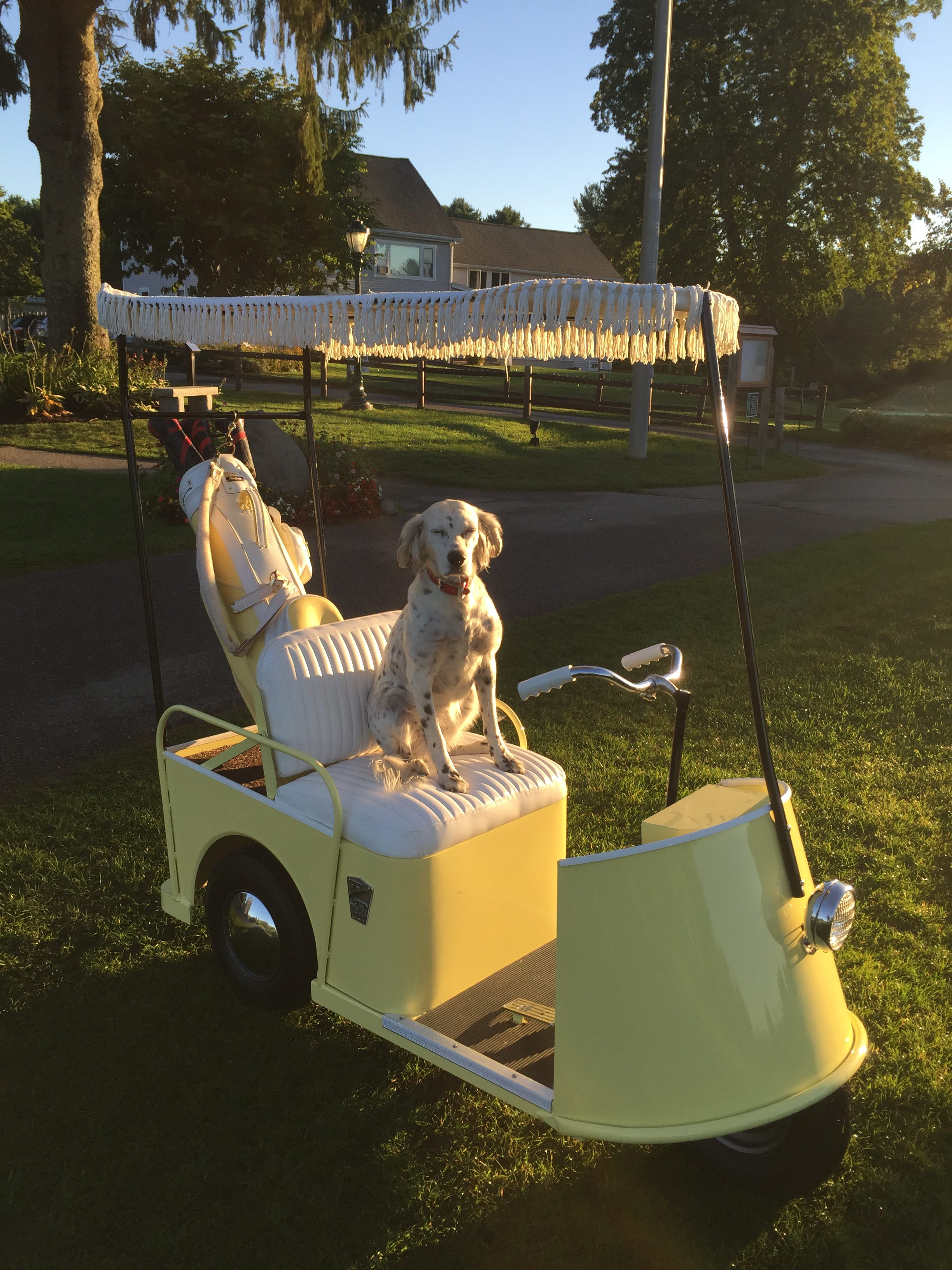 Vintage Golf Car Collection These Carts Are All On