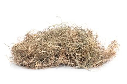 Dead Grass Pot Scrubber