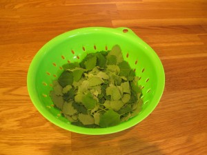 A Batch of Lamb's Quarter Leaves