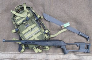 Ruger 10-22: The Urban Commando