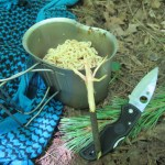 How to Make a Quick Bushcraft Trail Fork