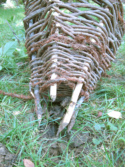 cone-pulled-out-of-ground