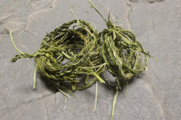 yucca-rope