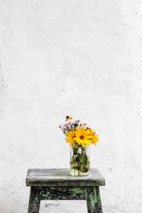 testimonials, kind words