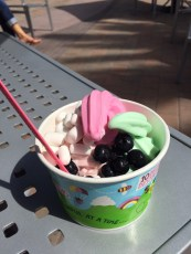 Westküsten-Sweet-Frog-Version: Yogurtland