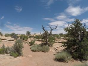 High Desert of Utah