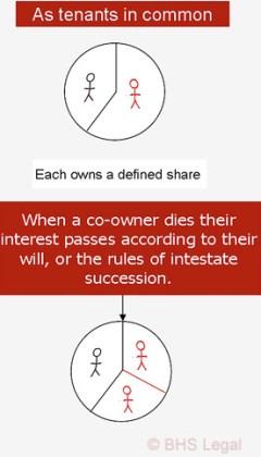 joint tenancy, tenancy in common, tenancy, tenants in common, wills, succession, inheritance, WillsHub
