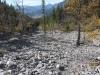 Trail through flood damage