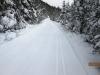 6808-a-lonely-trail-on-a-cold-day