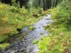 5736-creek-is-very-beautiful