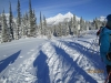 New snow cover in -25C conditions