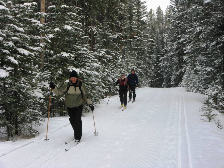 Banff Springs - Cross Country Skiing - Photo # 7