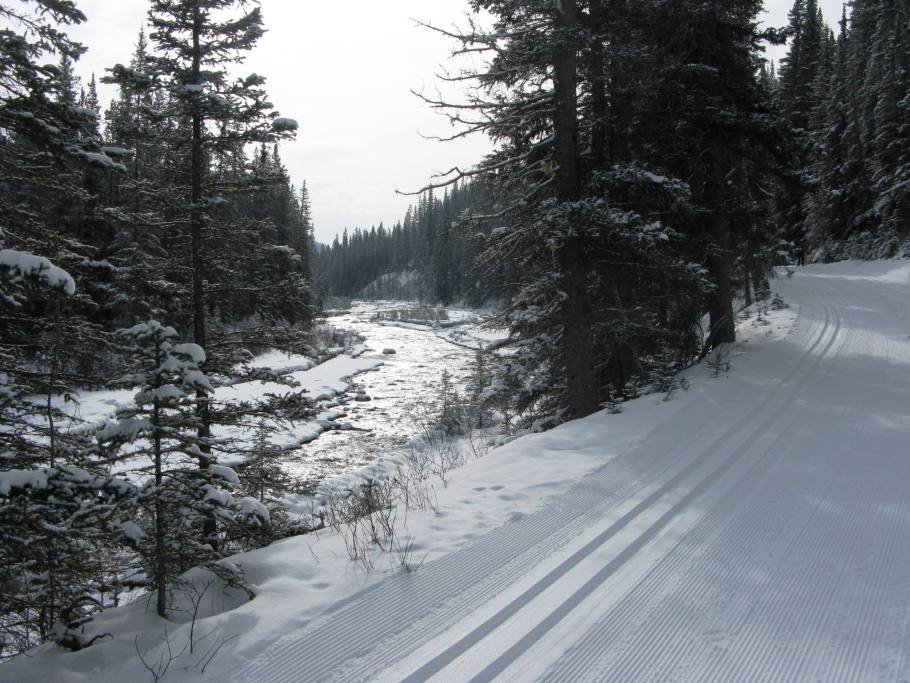 Banff Springs - Cross Country Skiing - Photo # 6