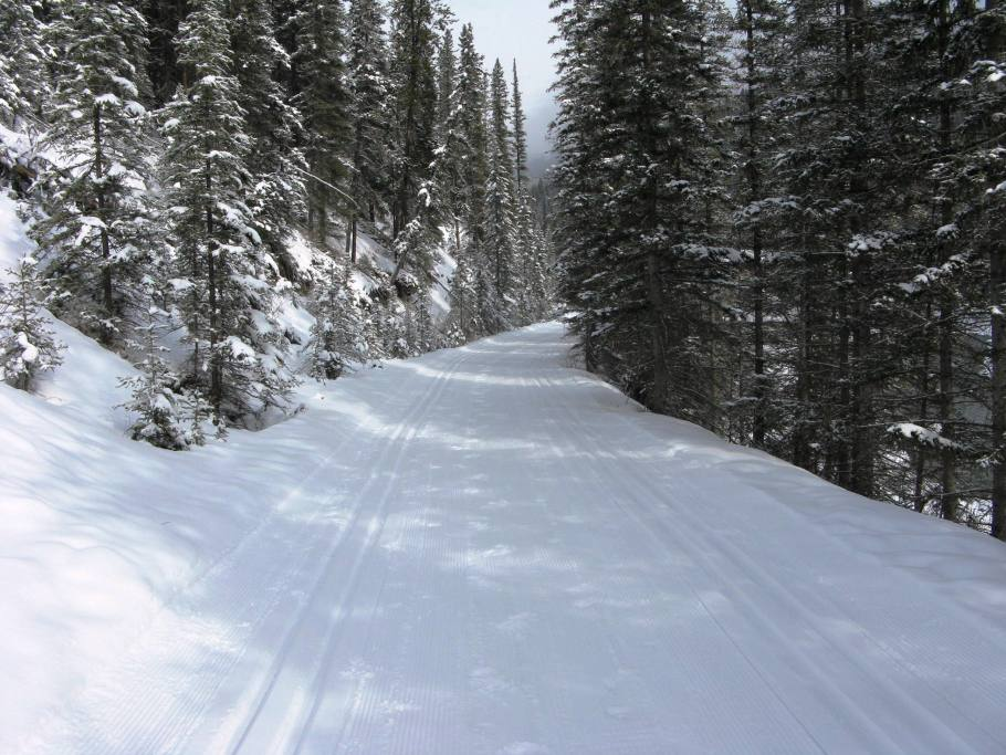 Banff Springs - Cross Country Skiing - Photo # 5