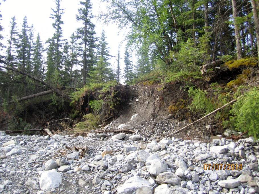 Trail Crossing of Creek