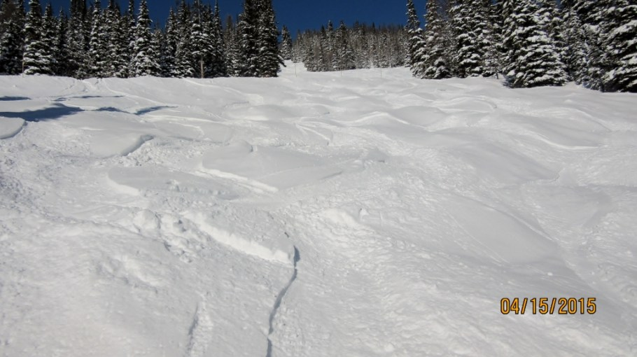Bumps on upper Raven