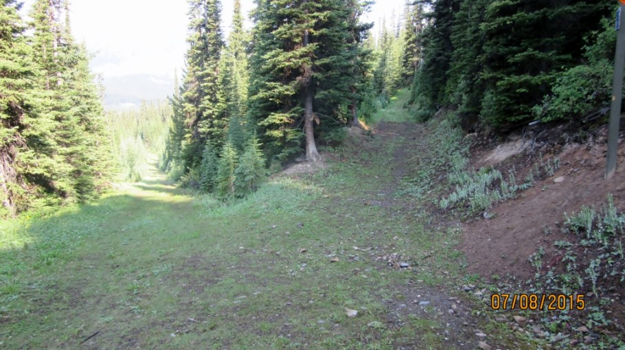 Both these old roads come up from Chester Lake Parking