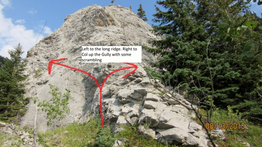 Left goes up the long ridge . Right up the gully with a bit of a scramble