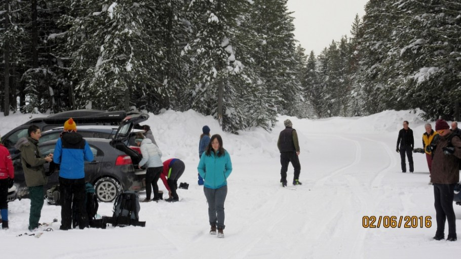 Busy at the trail head in the fresh snow