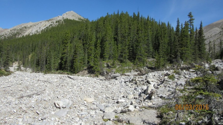 At the second fork Peaks 1 to 4 go right . Mt Byrant left