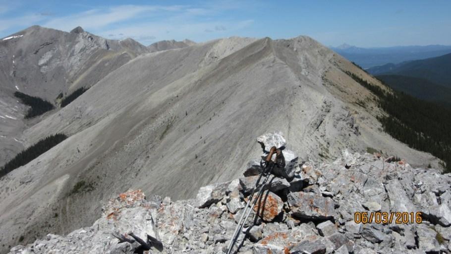 Summit of Peak #4