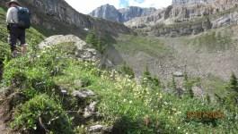Molar Pass South to Molar North