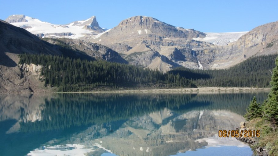 Bow Lake from Num-Ti Jah Lodge