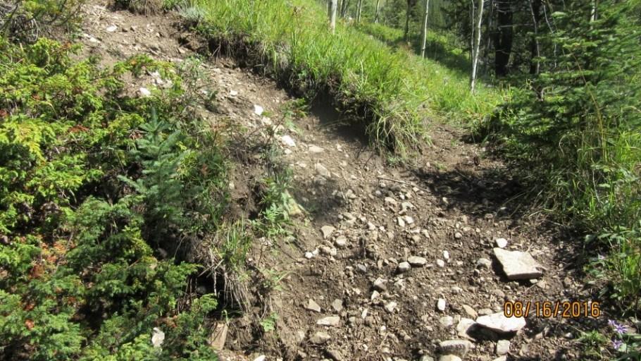 Fork left for Lineham Ridge