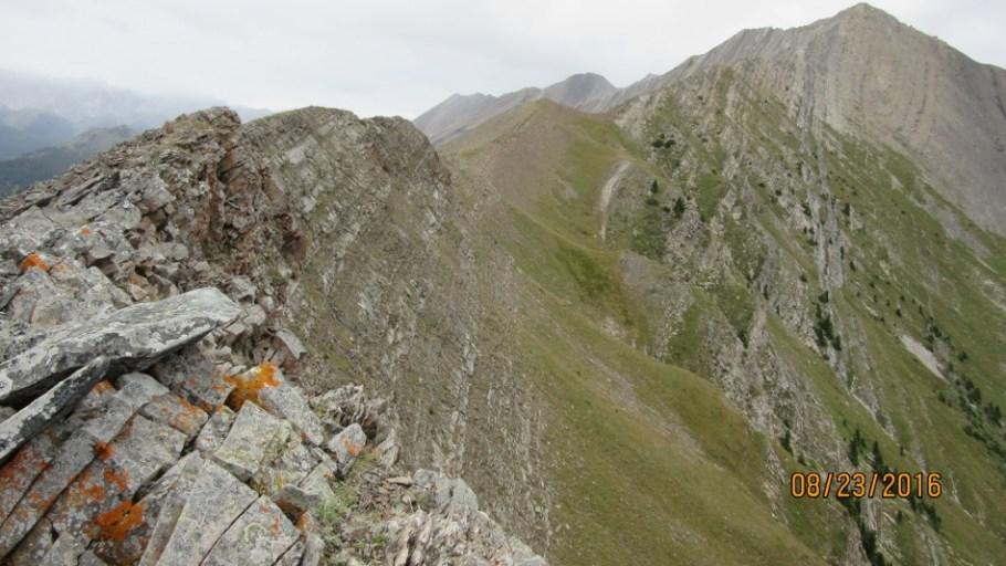 More of Lineham Ridge
