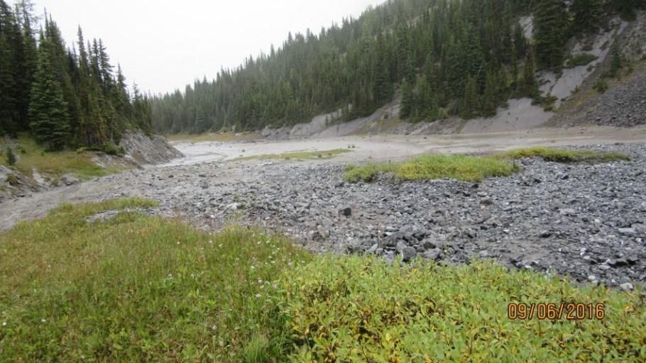 Foch Pond is empty we would walk across it on the way back