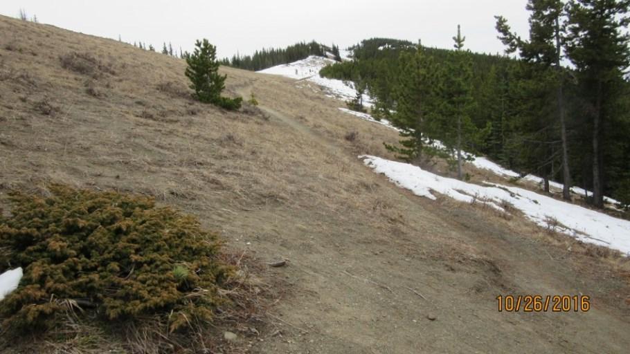 More of Jumpingpound Ridge