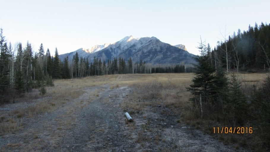 The meadow in front of Mt Peechee