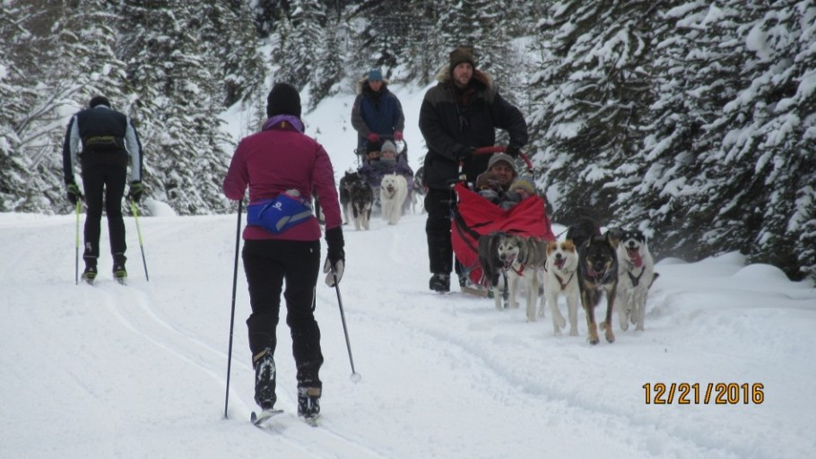 Skiers and dog sleighs it appears to work ok