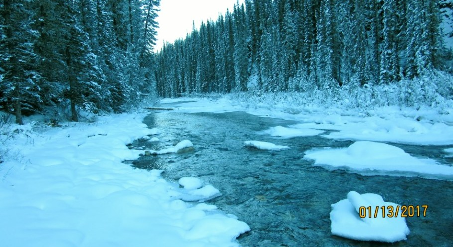 View down the Spray River