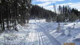 Pipestone Cross Country Skiing 2018