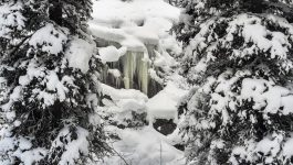 Tryst Ridge Snowshoeing