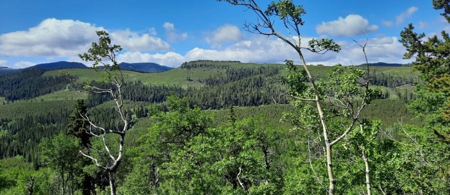 Seventy Buck ridge to Eagle Hill
