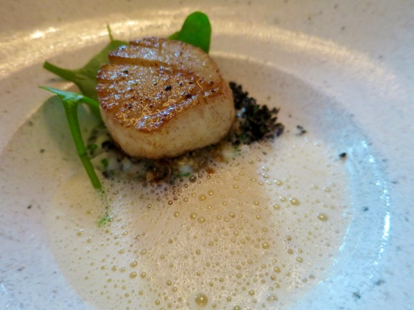 Course 5: Nancy's Day Boat Scallop, sun choke, black truffle