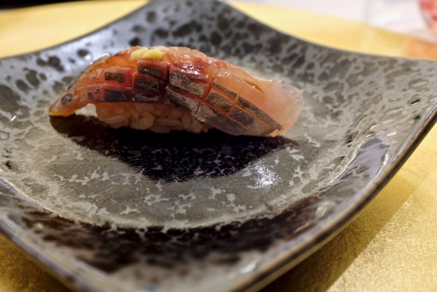 The Shota - Sawara - Spanish mackerel