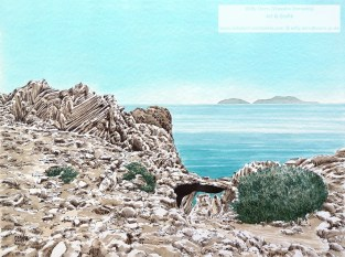 Agios Pavlos Beach 1, Willy Dorn, Kreta
