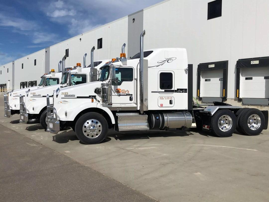 Willys Trucks