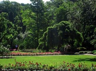 Zagreb_Botanic_015