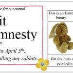 Rabbit Amnesty
