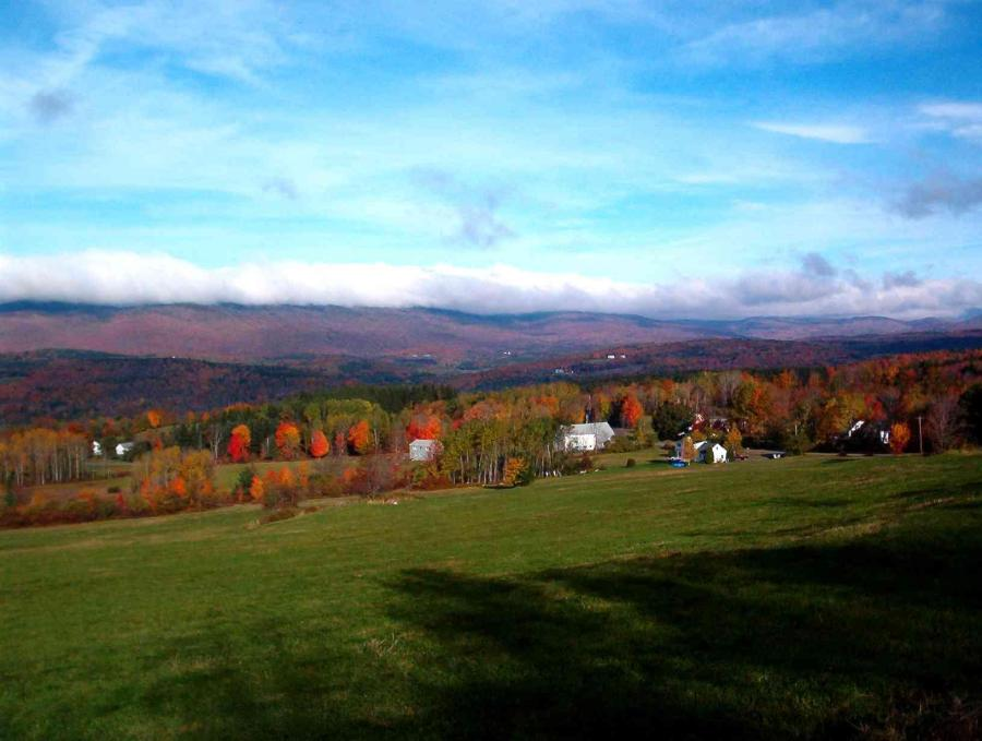 The Whites Road View in Fall by M. Towne