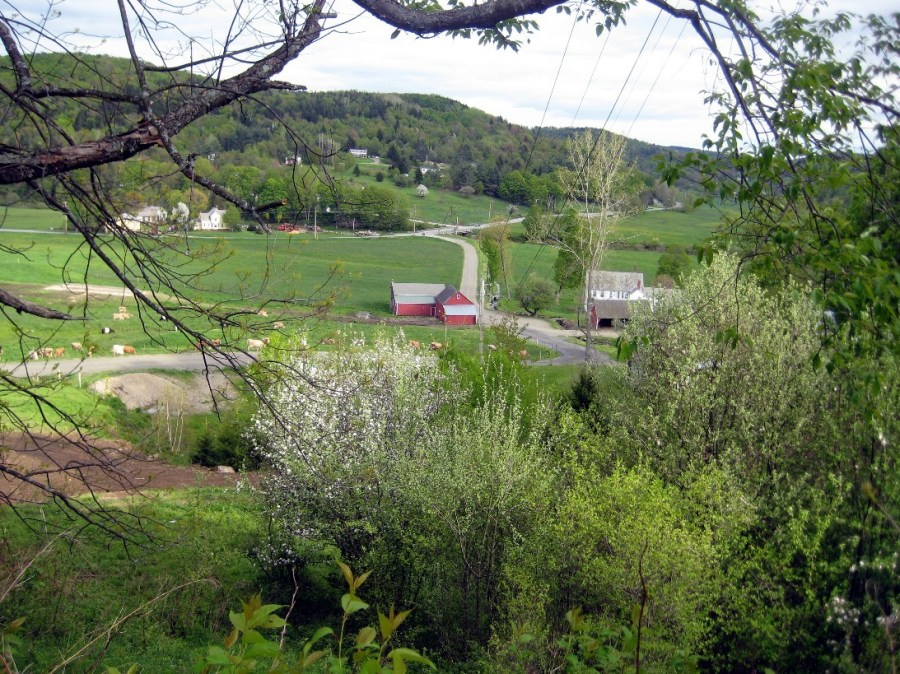 View From Woffenden Road in Spring by M. Towne
